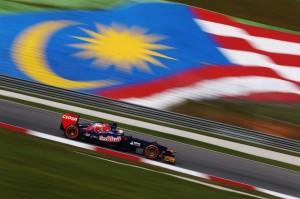 Toro Rosso (2)