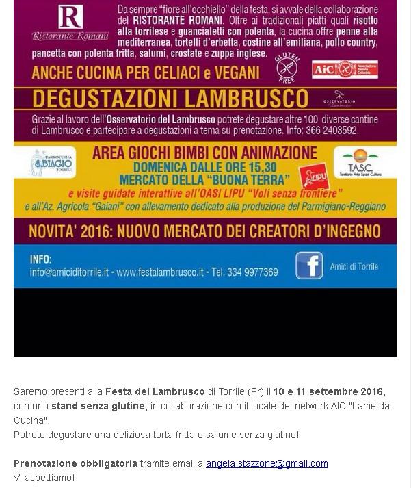 Festa del lambrusco - 10, 11 settembre 2016 - Torrile (Pr)